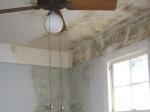 Monsoon Tips: मानसून में घर को सीलन और फंगस से बचाने के टिप्स, सेहत भी रहेगी फिट