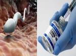 Covid Vaccination: पुरुषों की प्रजनन क्षमता पर असर डाल सकती है ये वैक्सीन, जानें क्या कहती है स्टडी