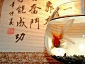 गुड लक चार्म वाली मछली