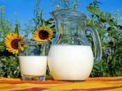 क्या बिना उबाले डिब्बाबंद दूध फायदेमंद है?