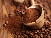 चॉकलेट और कोको पाउडर को एक ही समझने की न करें गलती, खाने से कम होते हैं कई किलो