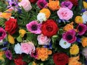 खूबसूरती बढ़ाने साथ कई बीमारियों को छूमंतर करते हैं ये फूल, जाने किस फूल में है क्या खूबी