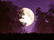 13 अक्टूबर को है शरद पूर्णिमा, इस दिन रखा जाता है खास व्रत