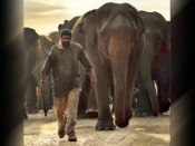 Transformation: 'हाथी मेरे साथी' के लिए राणा दग्गुबाती ने कम किए 30 KG, शेयर किए फिटनेस टिप्स
