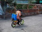 थाईलैंड के जू में चिम्पांजी से कराया सेनिटाइजेशन, प्रशासन ने कहा ये उसकी एक्सरसाइज है