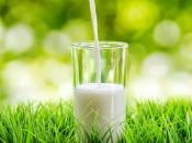 जरूरत से ज्यादा दूध पीना पड़ सकता है सेहत पर भारी, हो सकती हैं ये परेशानियां