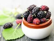 डायबिटीज की रामबाण औषधि है शहतूत की पत्तियां, जानें इसे खाने के अन्य फायदे