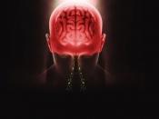 US में फैल रहा है दिमाग को खा जाने वाले अमीबा, वैज्ञानिकों ने जारी की चेतावनी