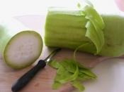 लौकी की सब्जी बनाते हुए न फेंके छिलके, इसे खाने से शरीर को होते हैं ये फायदे