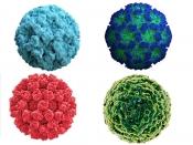 यूके में मिले नोरोवायरस के मामले, जानें कितना खतरनाक है यह वायरस