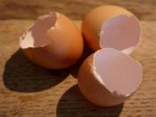 मुलायम और घने बालों के लिए लगाएं अंडे के छिलके का हेयर मास्क , जानें हेयर मास्क बनाने का तरीका