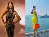 मलाइका अरोड़ा या नोरा फतेही बॉडी हगिंग ड्रेस में किसने बेहतर फ्लॉन्ट किया कर्वी फिगर