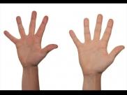 इन दो उंगलियों की लंबाई से जानें अपनी सेक्सुअल लाइफ