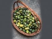 Kachri: छोटे तरबूज जैसे दिखती है ये सब्जी, जाने इस राजस्थानी सब्जी खाने के फायदे