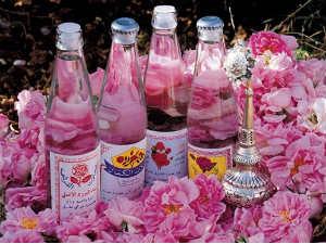 ज न य ग ल ब जल क फ यद Rose Water Benefits
