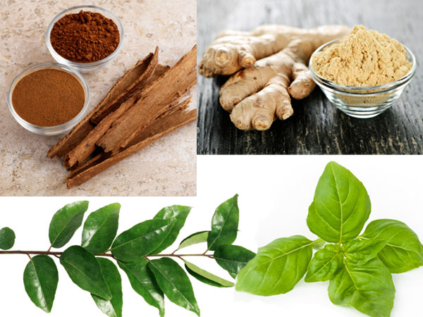 herbal remedies diseases