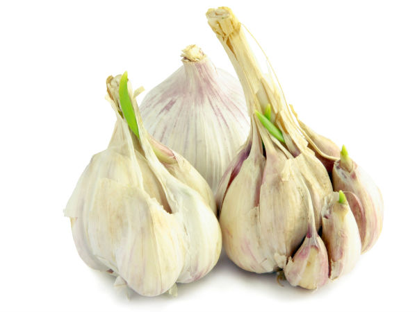 Eat sprouting garlic for more antioxidants