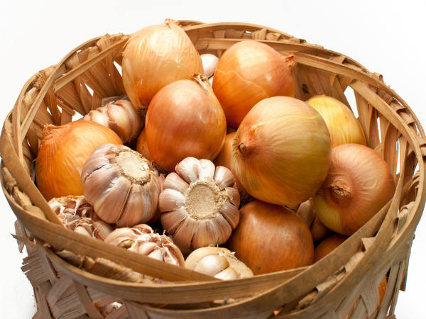 Best Ways To Store Onions In A Kitchen