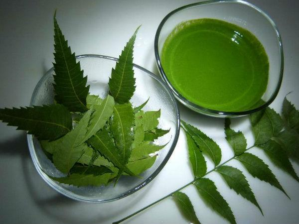 Benefits and Uses Of Neem Oil For Health