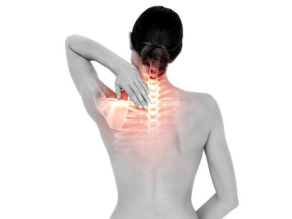 Image result for हड्डियों को मजबूत रखता है