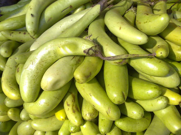 health benefits of green eggplant
