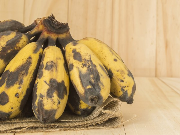 Eating Black-Spotted Bananas 6