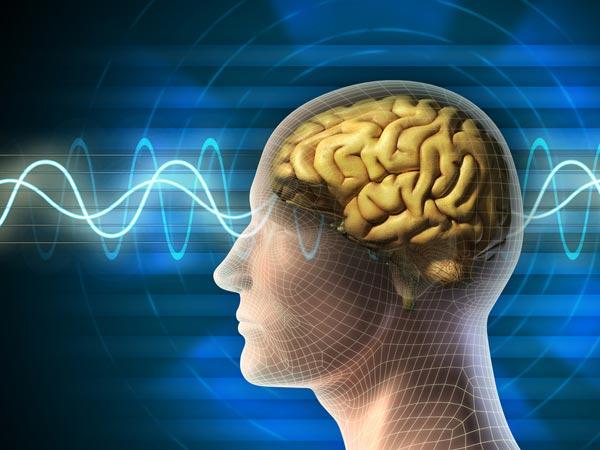 दिमाग को तेज करने का काम करती हैं ये जादुई जड़ी बूटियां