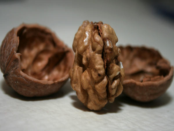 Have This Nut, It Helps To Better The Sperm Health