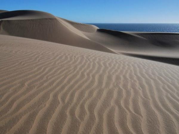 नामीब रेगिस्तान: जहां रेगिस्तान और समुद्र का होता है मिलन