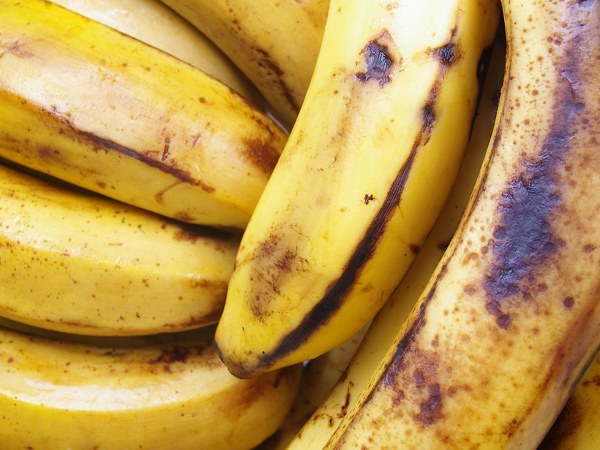 Morning Banana Diet – The New Hit Japanese Diet That Will Help You Lose Weight Fast!