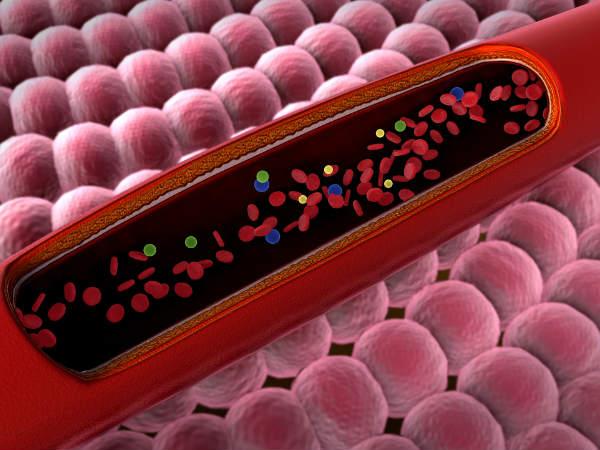 इन कारणों की वजह से ब्लड में बढ़ जाता है प्रोटीन