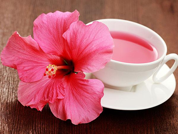 सिर्फ 12 हफ्तों तक इस फूल की चाय पीकर कम करें वजन