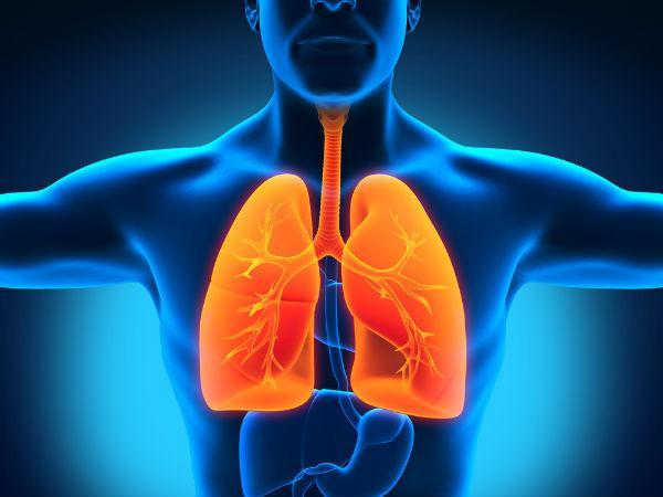 5) अस्थमा और फेफड़े के संक्रमण का उपचार करता है