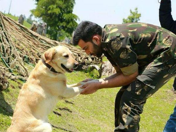 भारतीय सेना रिटायरमेंट के बाद वफादार कुत्तों को इसलिए मार देती है गोली..