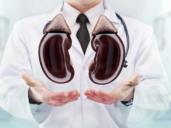 How To Repair Your Kidneys Naturally Using Baking Soda
