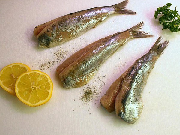 Do not eat these fish breeds if you wish to stay healthy