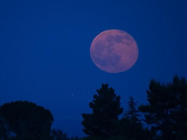 see-the-strawberry-full-moon-saturn-at-its-closest-point