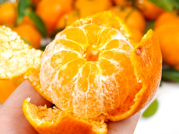 An orange a day slashes risk of failing eyesight, scientists says