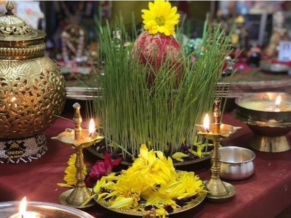 नवरात्रि 2019: पूजा के लिए उगाई जाने वाली जौ भी देती है शुभ अशुभ संकेत