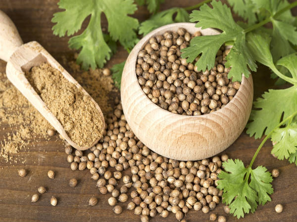 Coriander (Dhaniya) Seeds Help Manage Blood Sugar Levels