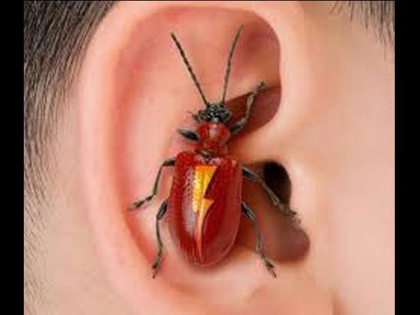 कान में घुस गया कोई कीट पतंगा, इन घरेलू उपायों से मिनटों में निकालें