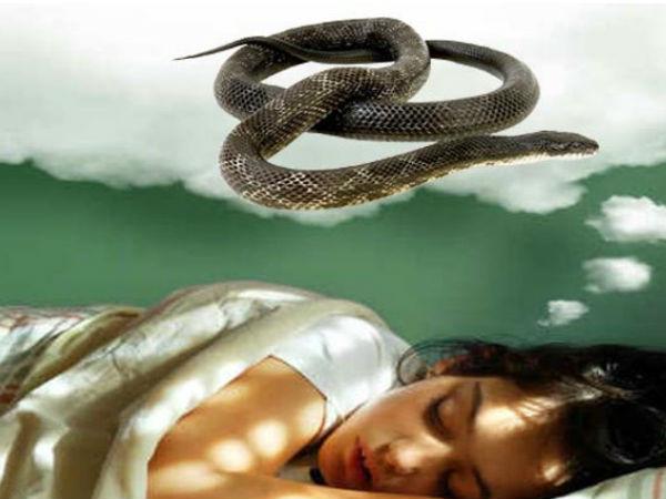 Most Read : रात को सपने में सांप ने डस लिया, सेक्स लाइफ से तार जुड़े होते है सपने में सांप को देखना