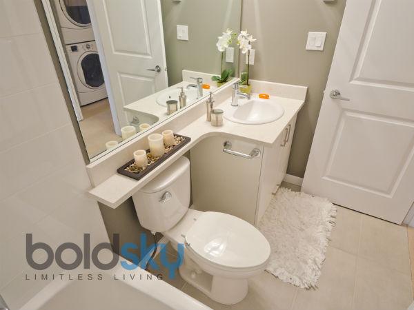क्या आप भी एसिड से साफ करते हैं टॉयलेट, जानें साफ करने का तरीका