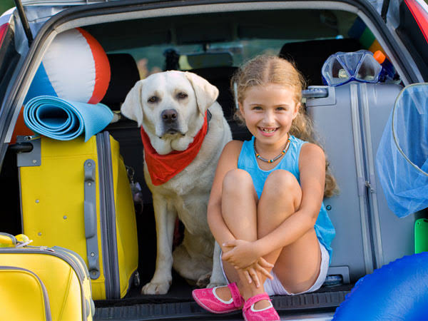 Your Pets Influence Your Car Choice, Study
