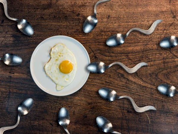You Should Eat These Food To Improve Egg Quality and Boost Fertility