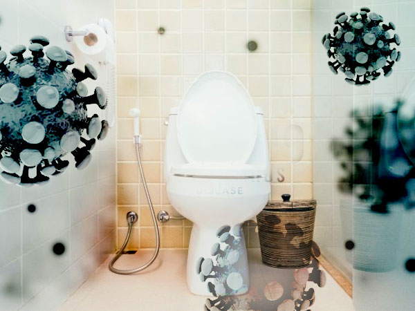 Flushing toilets can spread coronavirus-containing particles in the air: Study