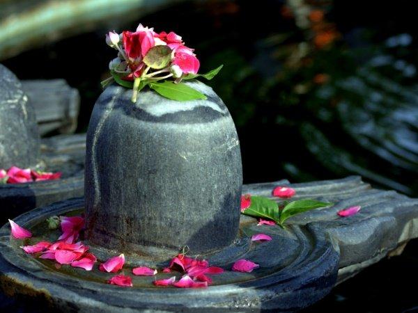Most Read: जानें इस साल कब से शुरू होगा भगवान शिव का प्रिय महीना सावन, बन रहा है ख़ास संयोग