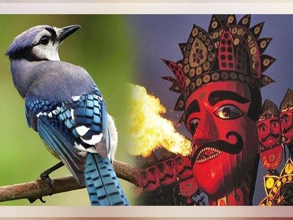 दशहरा के दिन शमी पूजन के अलावा इन कामों को करने की भी है परंपरा