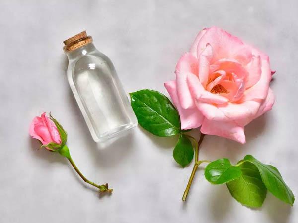 ग्लोइंग स्किन के लिए घर पर बनाएं ऑर्गेनिक गुलाब जल, नहीं होगा साइट इफेक्ट