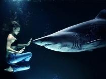 नरभक्षी शार्क के साथ तैरती है ये लड़की,हैरान कर देगी ये घटना